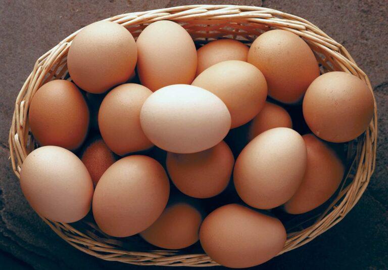 Slepačie vajcia – Všetko, čo o nich musíš vedieť
